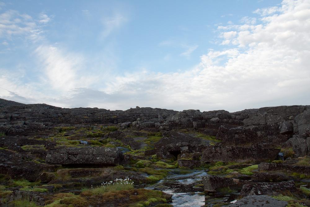 истоки ручья Уэлькуай