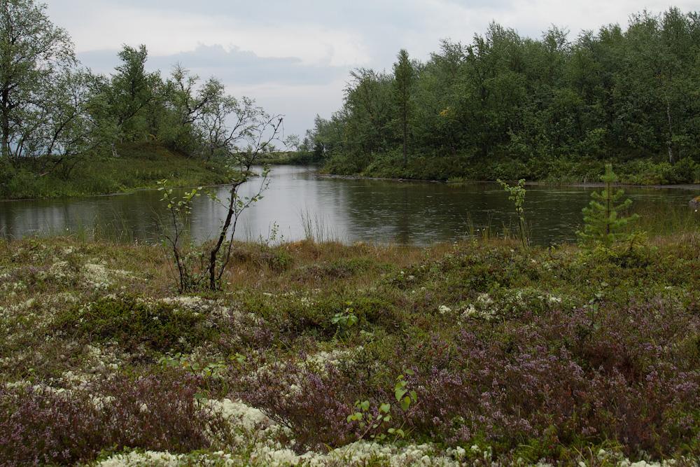 берег Умбозера