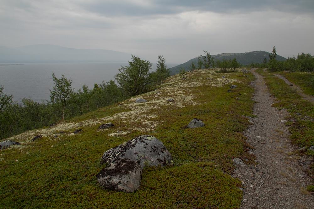дорога вдоль Умбозеро