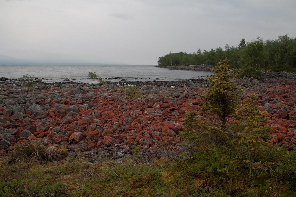 Красные камни мыс Чивернярк