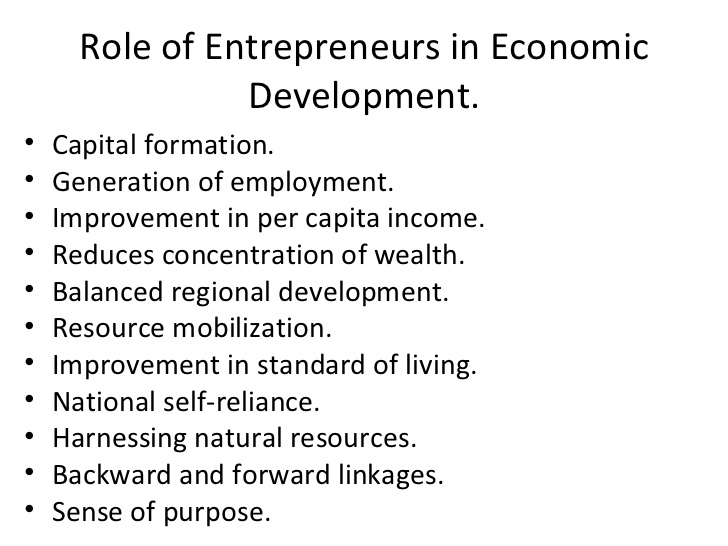 role of government in economic development in india pdf