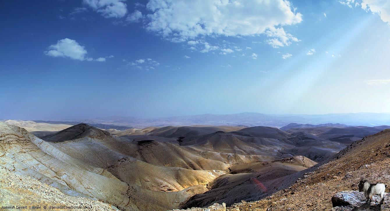 Judaean Desert - 28.12.2013 - 32