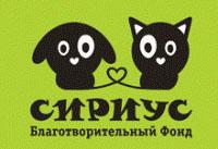 sirius_dogcat2
