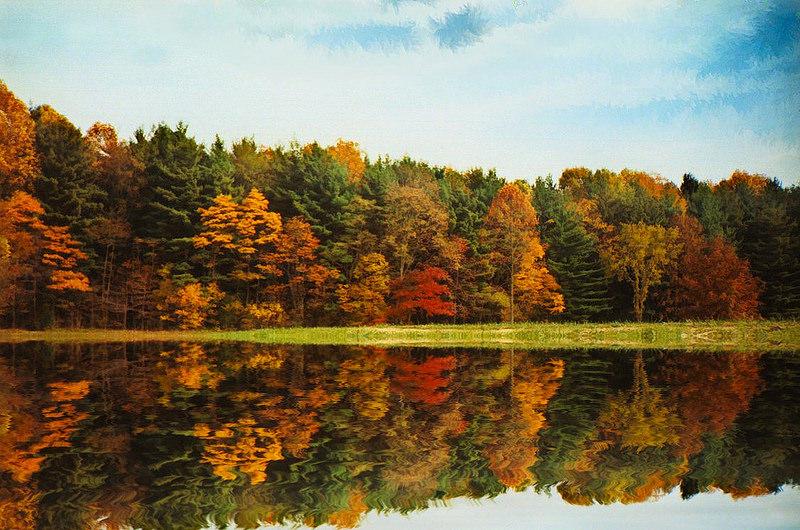 Eric Sloane - Autumn trees reflected in lake