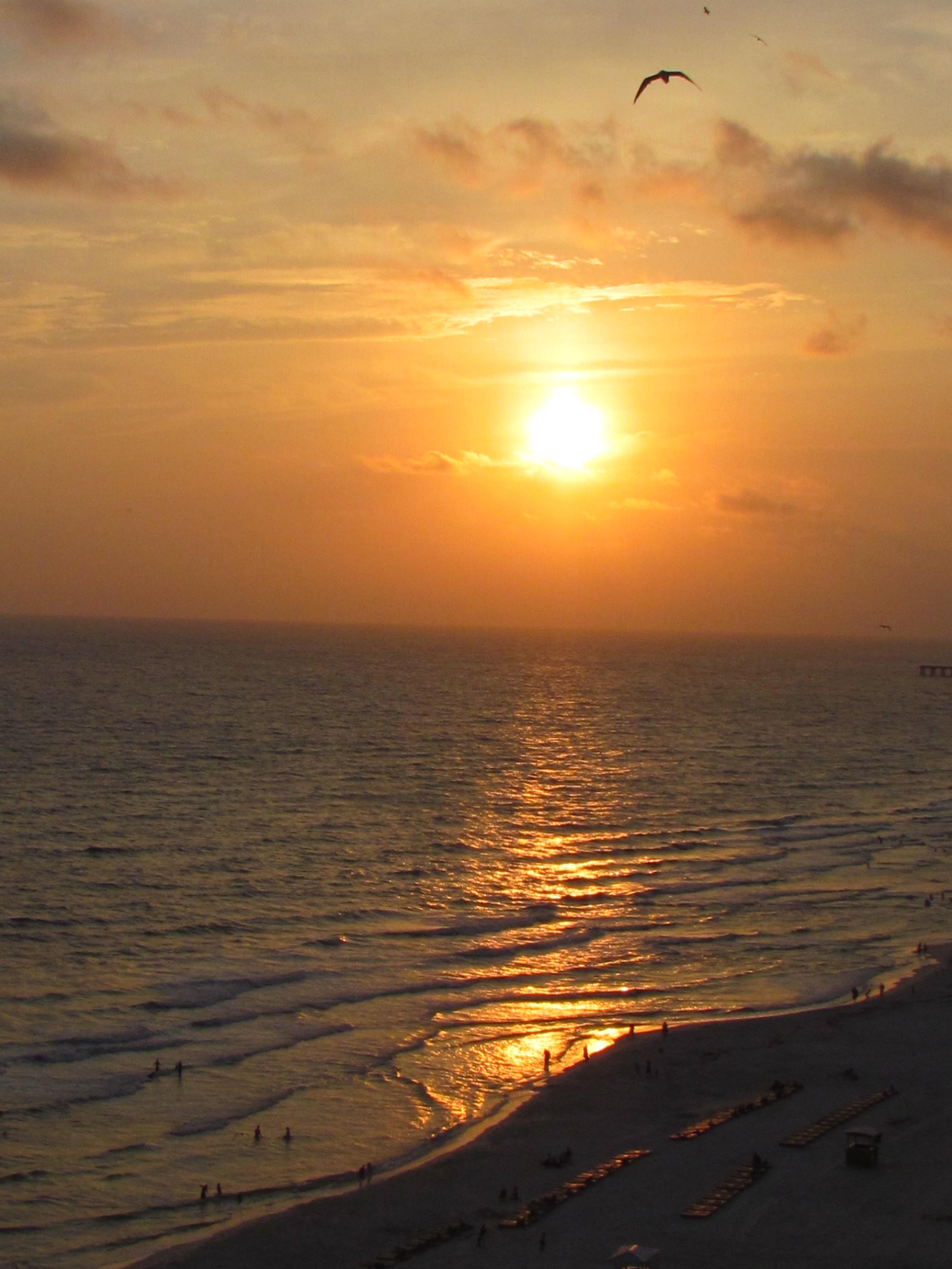 Panama Beach 2012 014