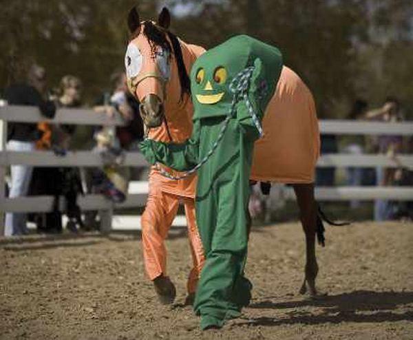 Fun_horse_37
