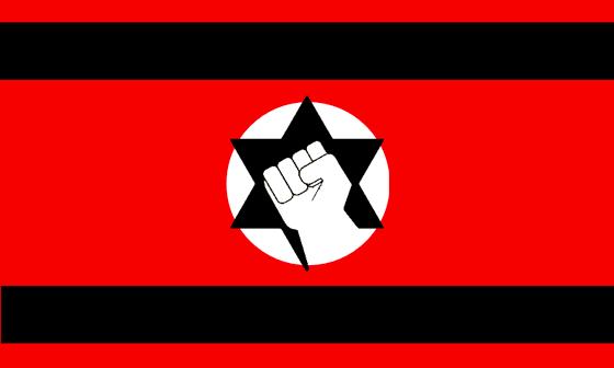 800px-flag_of_kach_and_kahane_chai.svg