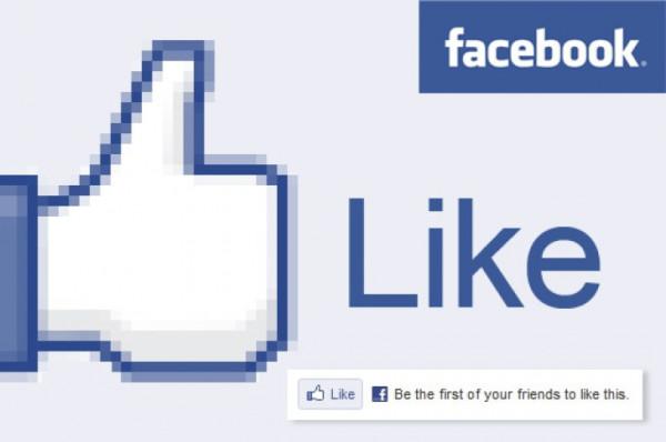 facebooklike_51235100