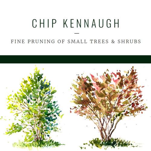 Chip-Kennaugh2