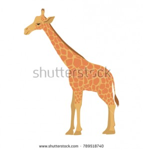 stock-vector-vector-cartoon-giraffe-isolated-at-white-background-hand-drawn-illustration-789518740.jpg