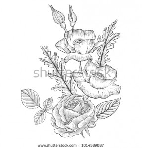 stock-vector-vintage-vector-floral-composition-with-flowers-buds-and-leaves-of-roses-and-poppies-imitation-of-1014589087.jpg