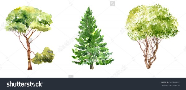 stock-photo-set-of-trees-drawing-by-watercolor-fir-pine-and-bush-isolated-natural-elements-hand-drawn-547846897