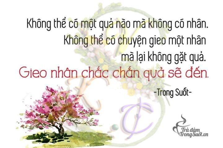 tra-dam-trong-suot-nhan-qua-suc-khoe-songvuikhoe.club_