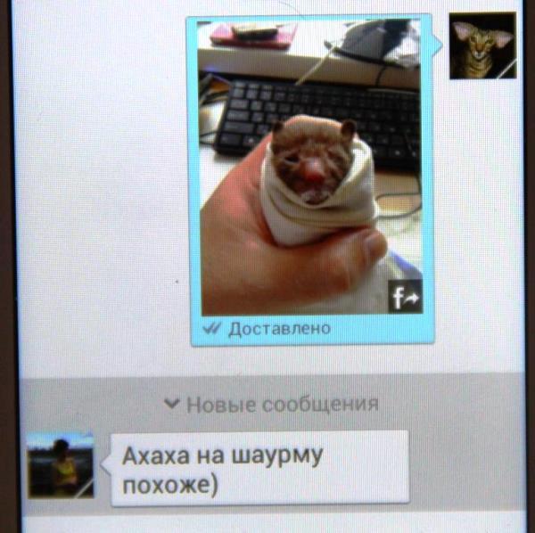 IMG_9933_600