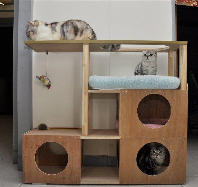 Как изготовить домик для кошек своими руками