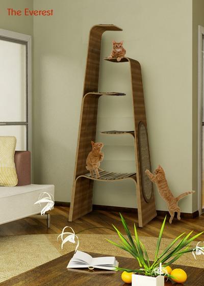 102395430_cat_house13