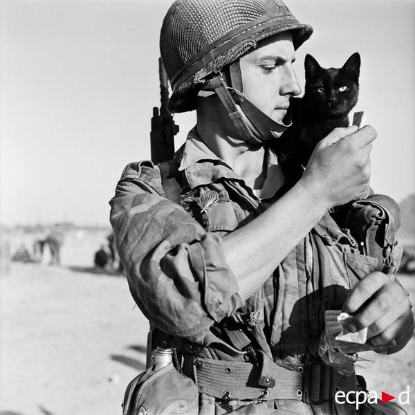 Солдат Робер Гебхардт 2 полка кол парашютистов и его кот Нассер в лагере на Кипре окт 1956 Поль Коркюф