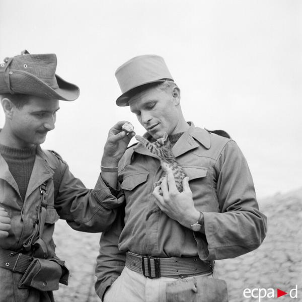 Солдаты 5 пех полка ИЛ нояб 1956 Алжир вото Вилар