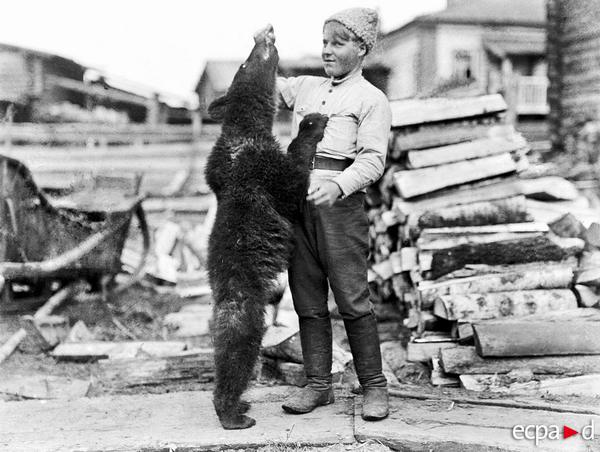 Троицкое Петровское бурый медведь талисман батальона Лапинского весна 1919 Эдвонд Коше