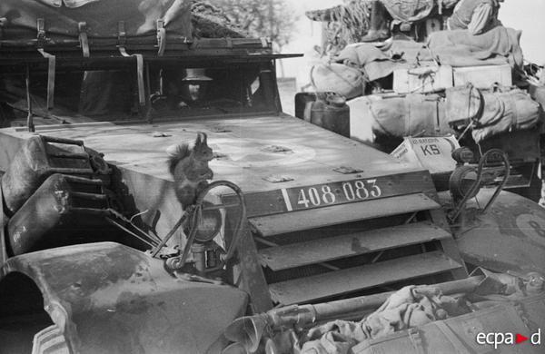 Алжирская пехотная дивизия белка март 1945 Пьер Рауль Виньяль