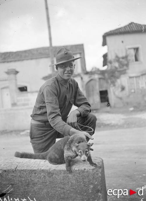 Лагерь Франклин хорек талисман морских пех авг 1917 Альбер Моро