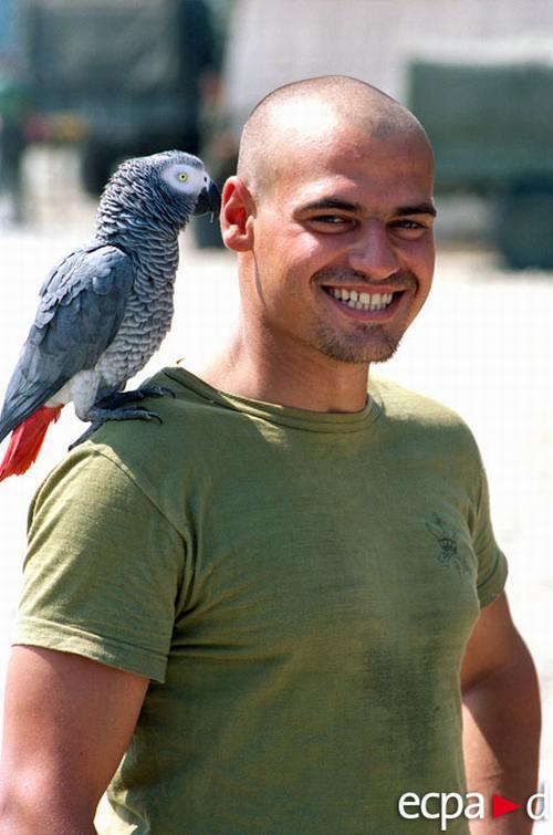 Легионер испанец с талисманом отряда серым габонским попугаем 2001 Анн Тьерри
