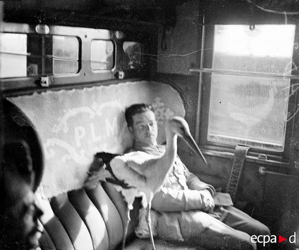 Лейтенант Фонк пилот эскадрильи 103 Сигонь покидает Лион на поезде Элен аист подарен мэром Лиона июнь 1918 Даньо