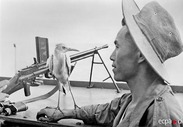 Талисман отряда Сене 1953