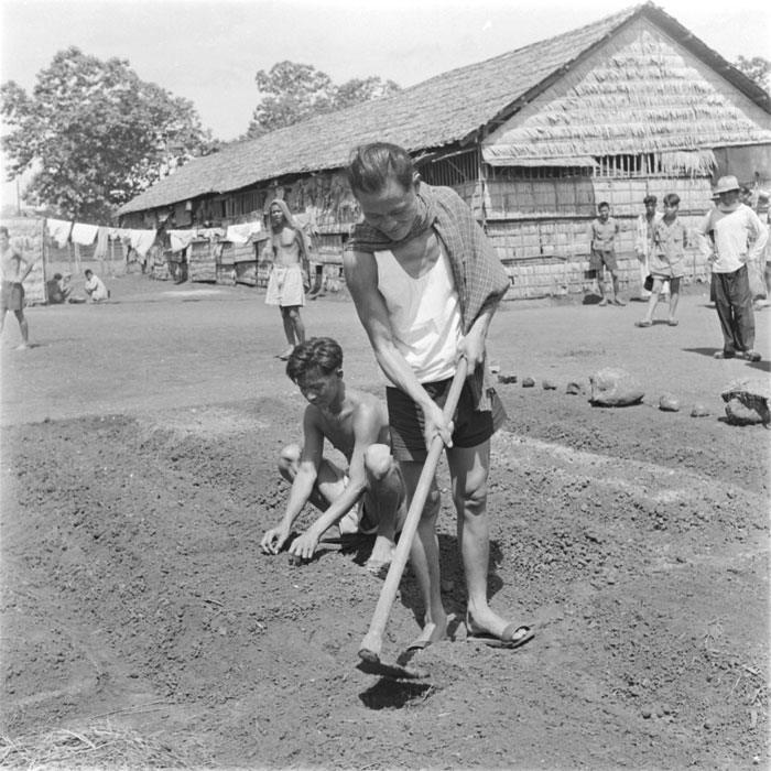 два заключенных ухаживают за садом май 1952