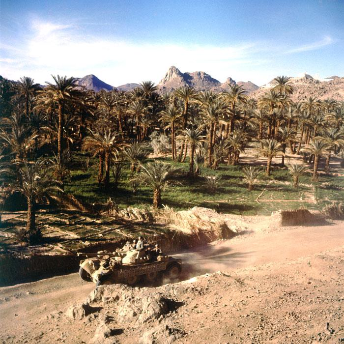 08 Развед бронеавтомобиль в пальмовой роще в Сахаре фев 1958 Жерар Додю