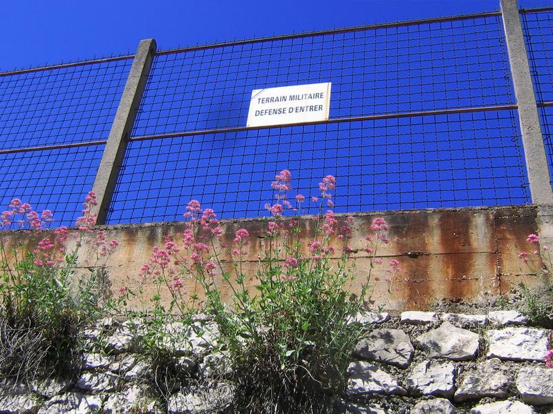 10 ограда