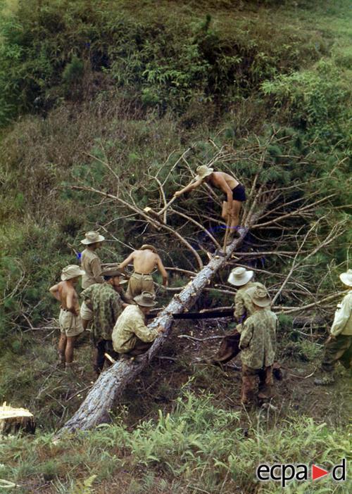 Работы по вырубке ле5са возм в На Сане нояб дек 1952
