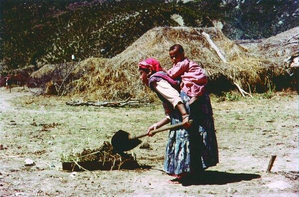 Женщины на работе, муждчины в бистро 1959 Ж Буаджьян