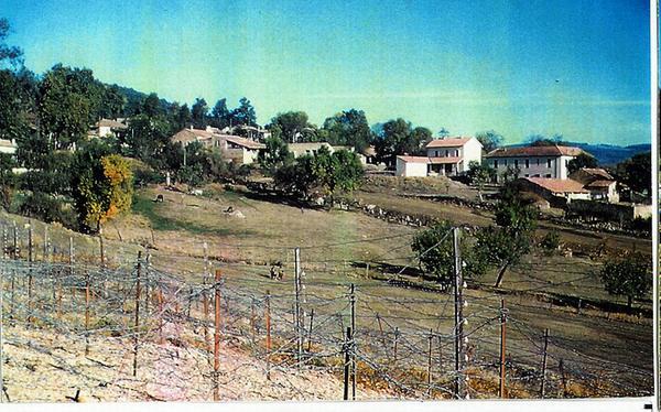 Вид на деревню Аин Сеннур 1960