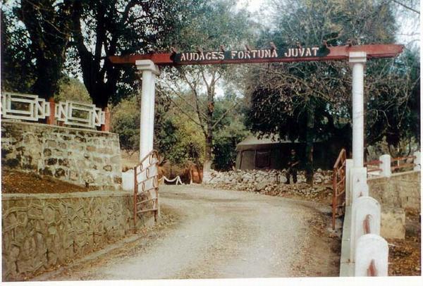 Лагерь отряда 44 1960
