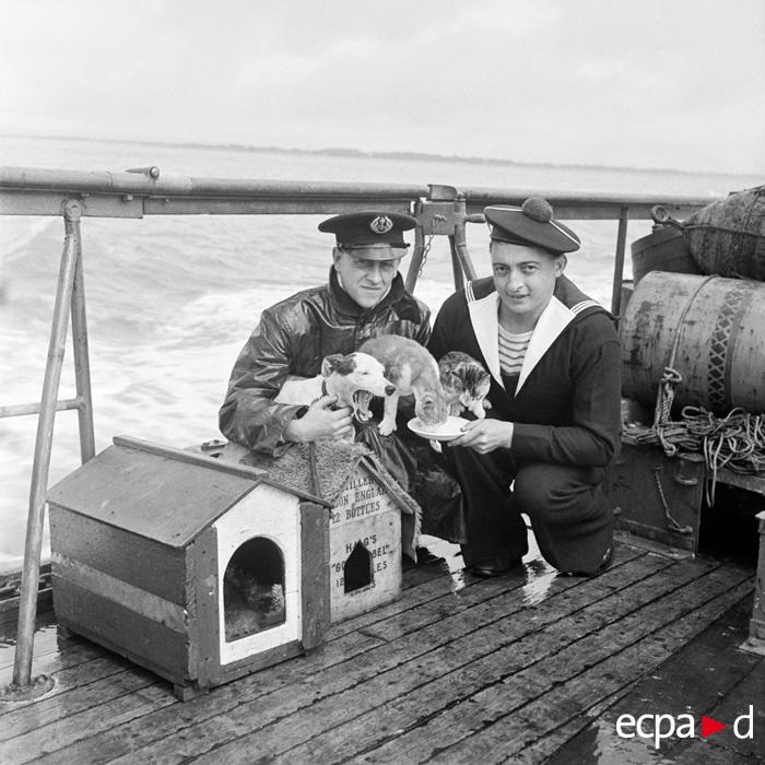 Талисманы уч судна Теодор Тисье июль 1940 Ги Мас
