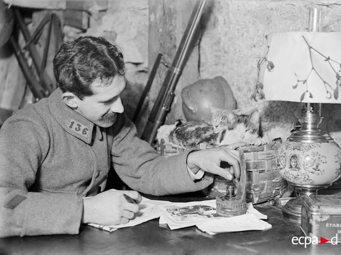 В окопе коты Сен Томас и Розетт и солдат 136 пех полка 7 фев 1916 Тетар
