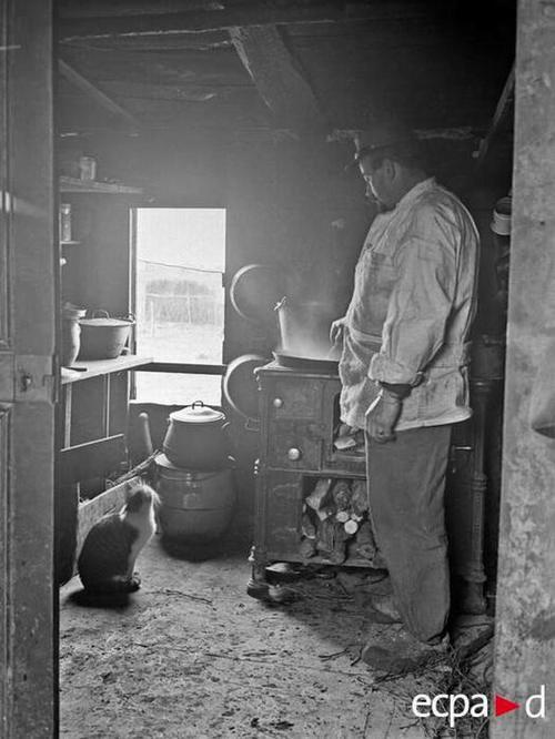повар и кот смотр на готов пищу 12 дек 1916 Э Фамешон