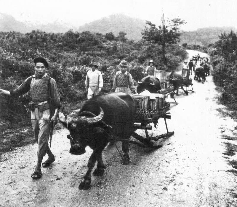 Вьетнамцы 3