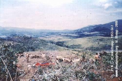 ДБФ нояб 1953