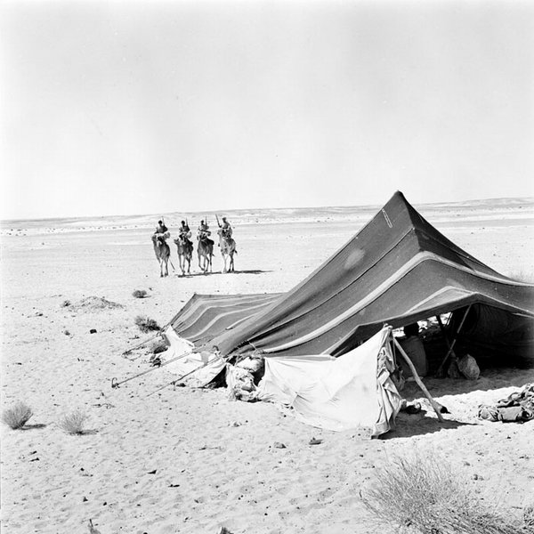 Лагерь арки
