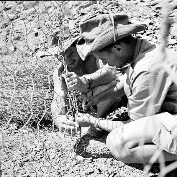 Солдаты плетут сеть июнь 1956 Гайан