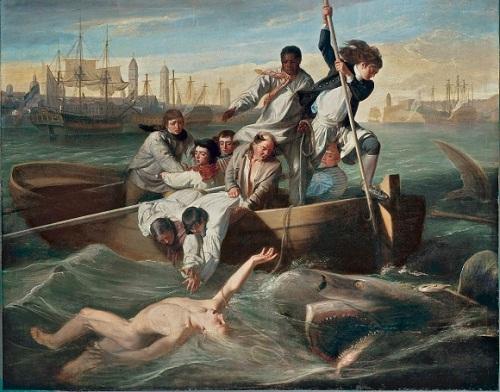 Потерп кораб ат акулой 1846 Бияр.jpg