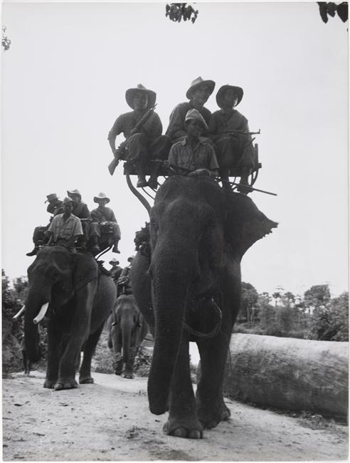 Слоновый патруль камб стрелки авг 1952 Робер Буве.jpg
