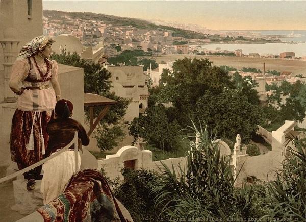 Алжир арабы.jpg