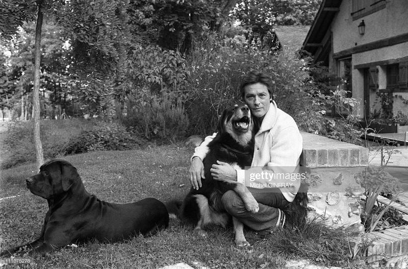 1980 с собаками нояб1980.jpg