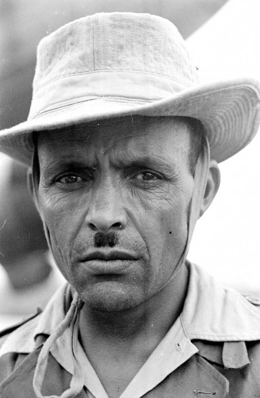 алжирец 1950.jpg