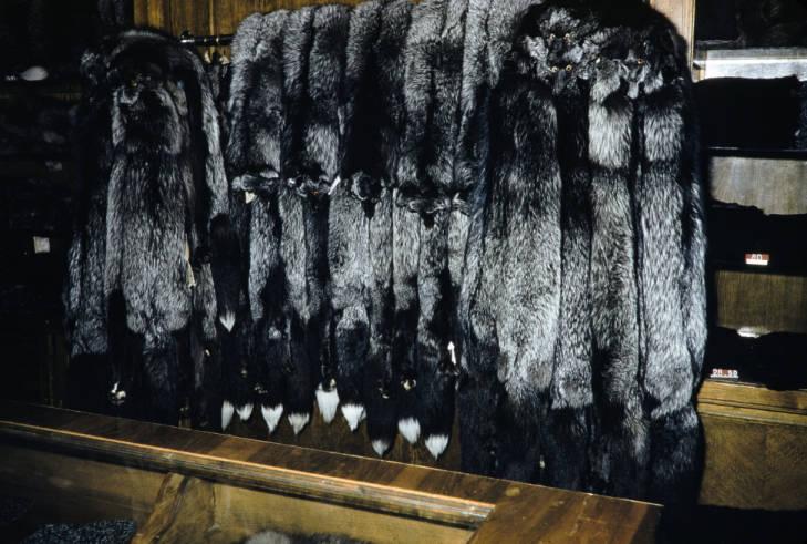 Москва в магазине меха.jpg
