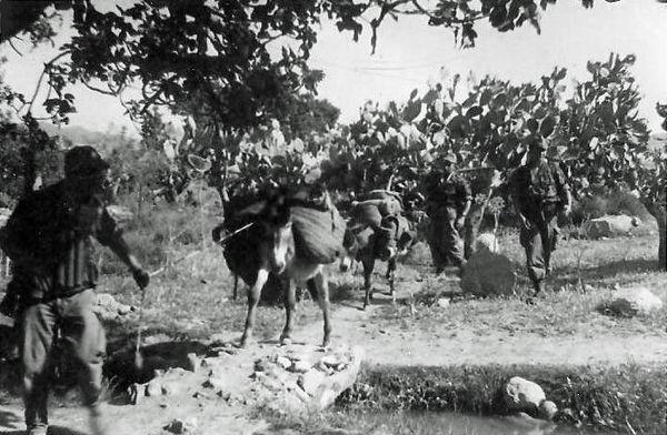 Во время операции Фламмеш май 1960.jpg