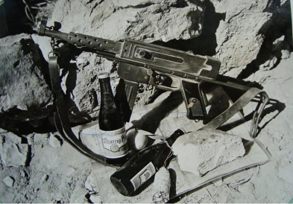 Волки Бижара (3 полк колониальных парашютистов): на операциях